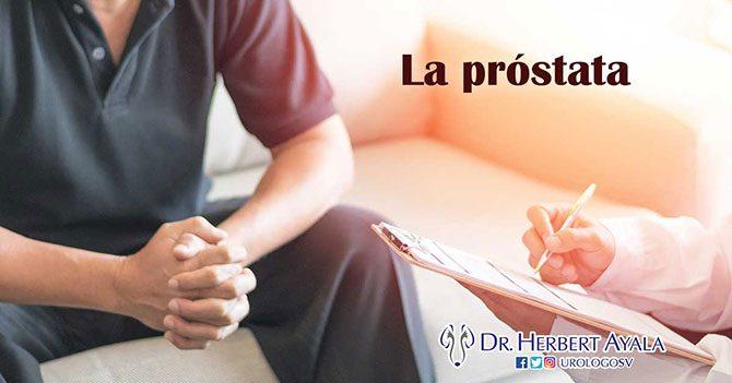 La próstata, gran desconocida